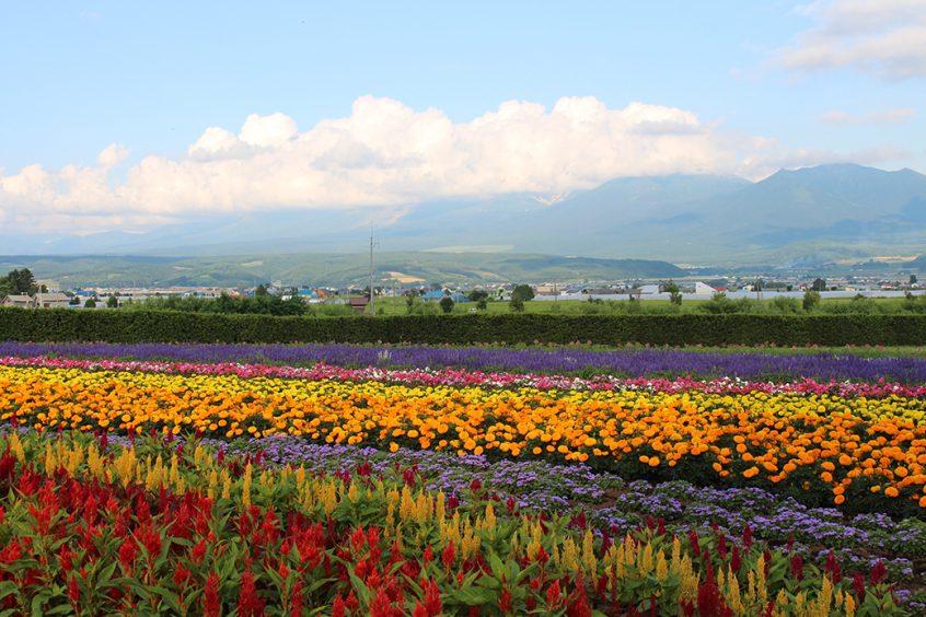 Hokkaido (c)EatTalkTravelJapan