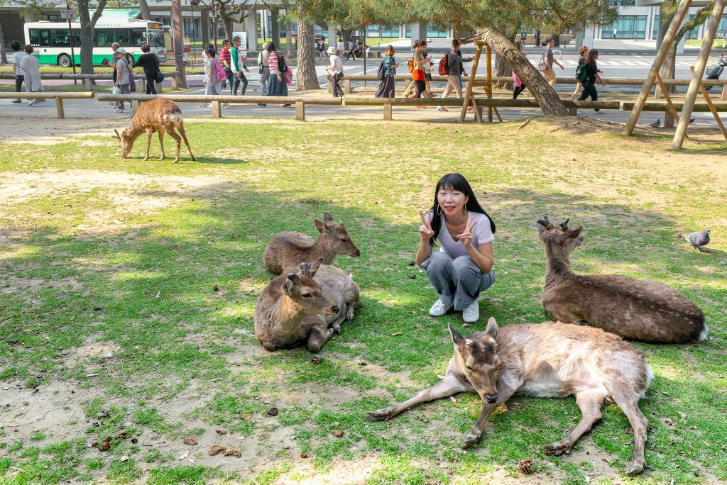 two weeks in Japan: these are the famous deer in Nara