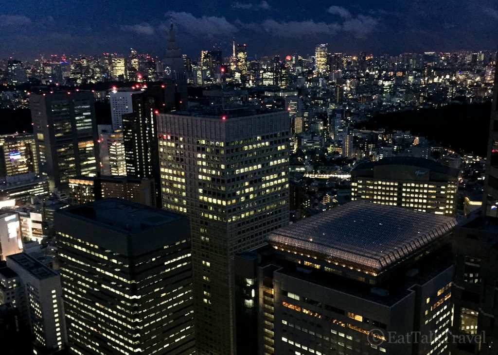 Check out the view from the Tokyo Metropolitan building during your two weeks in Japan